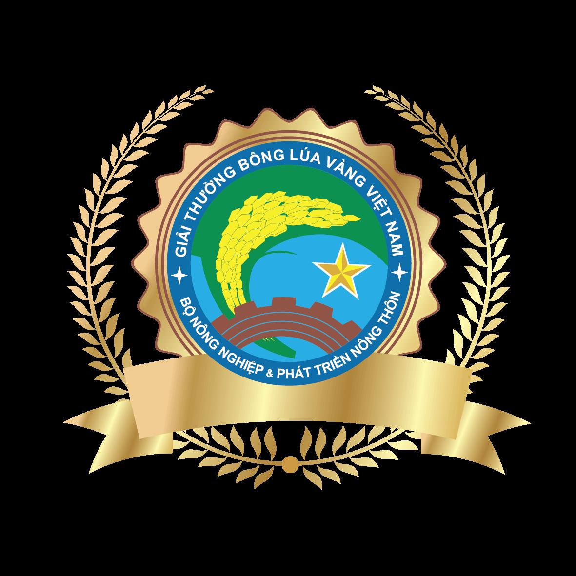 Bông lúa vàng Việt Nam